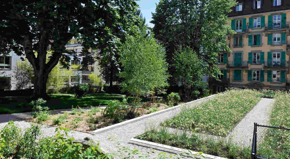 Web Lausanne Maupas Foto3