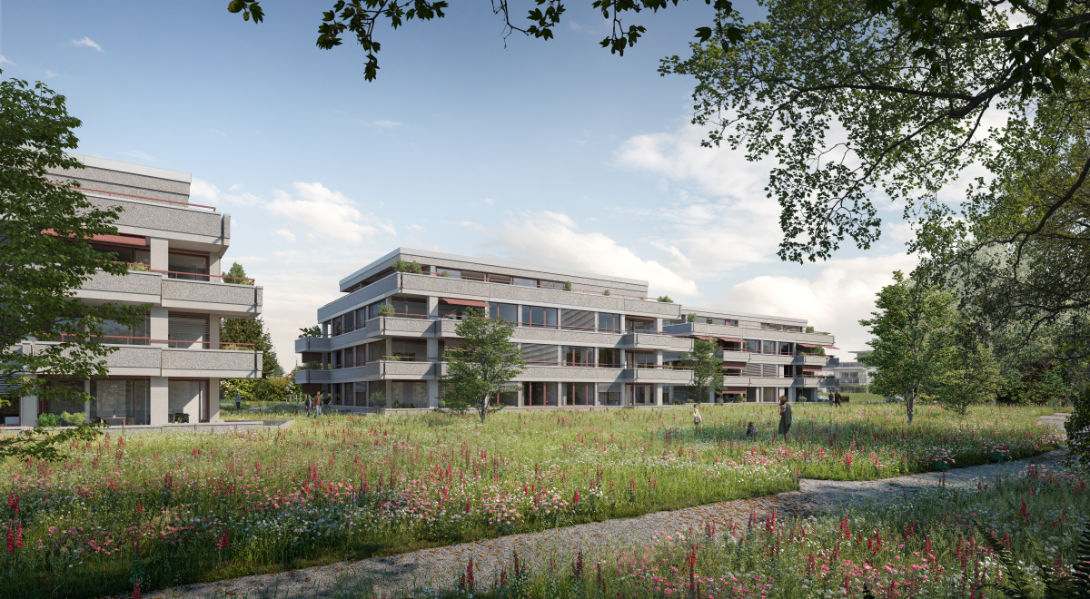 8568 Wohnüberbauung Aachweg Egnach Phase 2 A1 F3